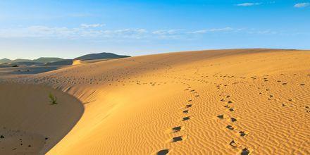 Nationalparken Las Dunas ligger ca fem kilometer utanför Corralejo på Fuerteventura, Kanarieöarna.