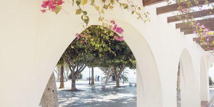 Costa del Sol har en klassisk spansk känsla med vita hus, mycket färgrika blommor och ständig havsutsikt.