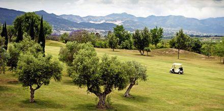 Costa del Sol brukar skämtsamt kallas för Costa del Golf, tack vare dess många golfbanor.