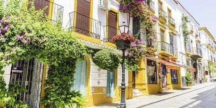 Lyxiga Marbella på Costa del Sol, med vackra byggnader och prunkande blomster.