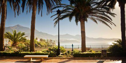 Det subtropiska klimatet på Costa del sol erbjuder många härliga resmål och vacker natur.