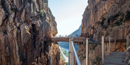 Den äventyrlige kan vandra på Caminito del Rey utanför Malaga.