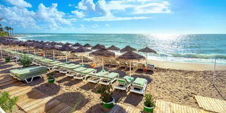 Benalmadena i Malaga är en härlig badort med lång sandstrand.