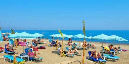 Stranden vid hotell Costas & Christina i Platanias på Kreta, Grekland.