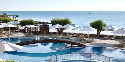 Poolområde på hotell Creta Maris Beach Resort i Hersonissos på Kreta.