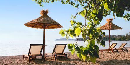 Stranden i Dassia på Korfu, Grekland.