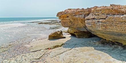 Stranden Fuwairit Beach utanför Doha i Qatar.