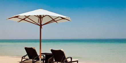 Strand vid Hilton Dubai Jumeirah Resort, Förenade Arabemiraten.