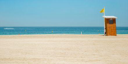 Strand i Al Barsha-området i Dubai, Förenade Arabemiraten.