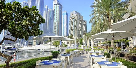 Dubai Marina i Dubai Jumeirah Beach, Förenade Arabemiraten.