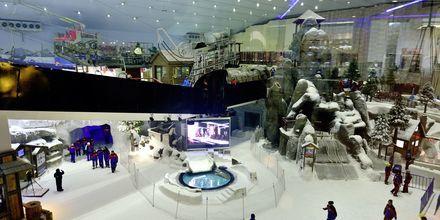 Ski Dubai i Mall of the Emirates i Dubai Al Barsha, Förenade Arabemiraten.