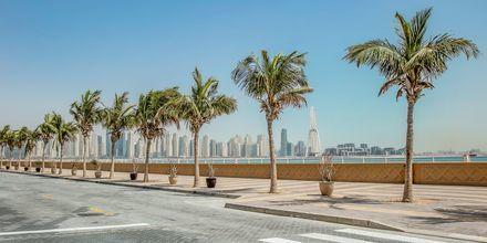 Strandpromenad i Dubai Palm Jumeirah i Förenade Arabemiraten.