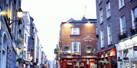 Dublin, Irlands huvudstad, är en liten och pittoresk storstad.