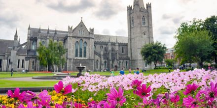 En känd sevärdhet i Dublin - Saint Patrick Cathedral.