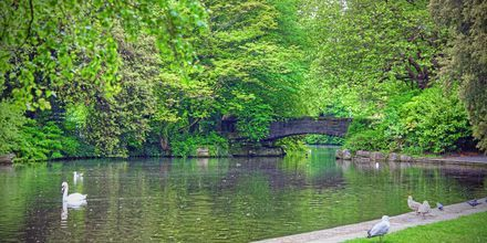 St. Stephen's Green.