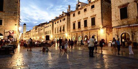 Kvällsliv i Dubrovnik, Kroatien.