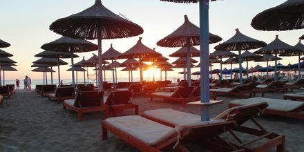 Stranden vid Durres Riviera.