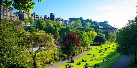 Park mellan Edinburghs nya och gamla stan.