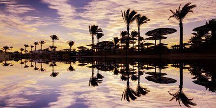 Romantiska solnedgångar i Hurghada, Egypten.