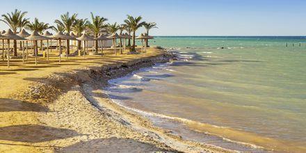 Härliga stränder i Hurghada, Egypten
