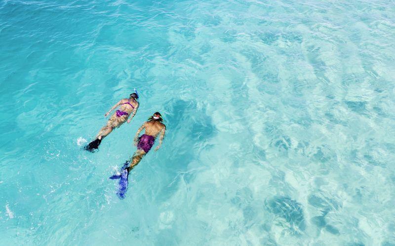 Röda havet sägs vara ett av världens bästa dyk- och snorklingsvatten.