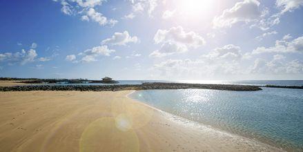 Stranden utanför hotell Elba Sara på Fuerteventura, Kanarieöarna.