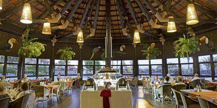 Poolrestaurang på hotell Elba Sara på Fuerteventura, Kanarieöarna.