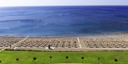 Stranden vid hotell Elysium Resort & Spa, Rhodos.