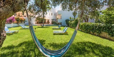 Koppla av i hängmattan på hotell Emerald i Malia på Kreta.