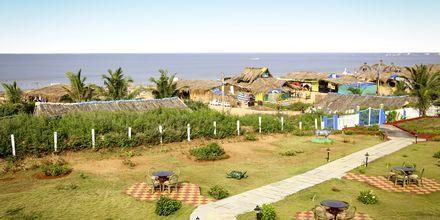 Utsikt från Empire Beach Resort i norra Goa, Indien.