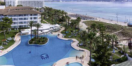 Poolområde på Esperanza Resort, Mallorca.