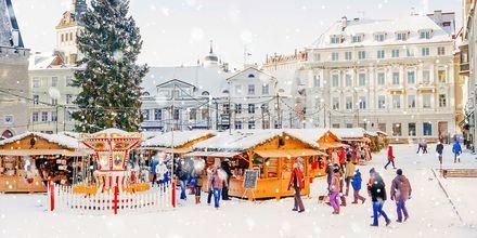 Julmarknad på Rådhustorget i Tallinn, Estland.