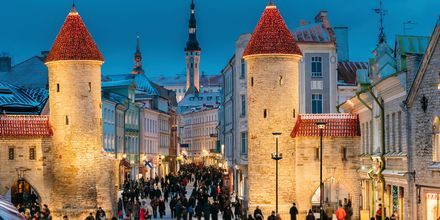 Viruporten som leder in till Tallinns gamla stan.