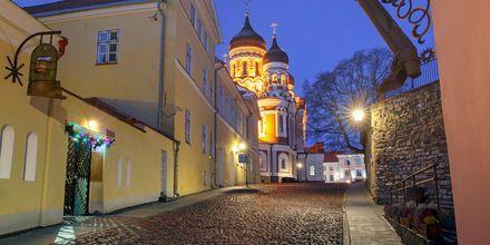 Gamla stan i Tallinn, Estland.