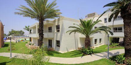 Hotell EuroNapa i Ayia Napa, Cypern.