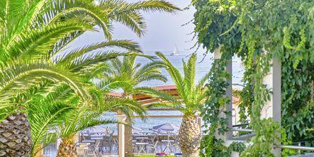 Hotell Eva Bay på Kreta.