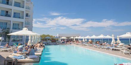 Poolen på hotell Evalena Beach i Fig Tree Bay, Cypern.
