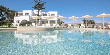 Välkommen till Evdokia i Plaka Beach, Naxos.
