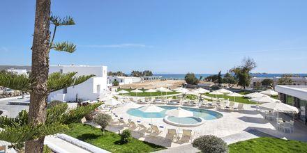 Poolområde på hotell Evdokia på Naxos.
