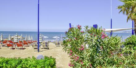 Stranden vid Fafa Apartments, Durres Riviera, Albanien.