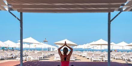 Ta del av gratis yoga på på hotell Fafa Grand Blue i Durres Riviera i Albanien.
