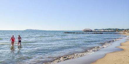 Stranden vid hotell Fafa Premium vid Durres riviera i Albanien.