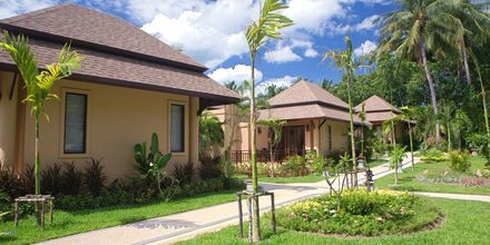Dubbelrum i bungalow på Fair House Villas & Spa på Koh Samui, Thailand.