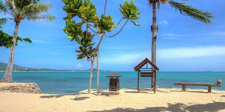 Strand vid Fair House Villas & Spa på Koh Samui, Thailand.
