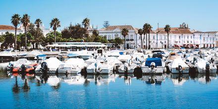 Marinan i Faro, Portugal.