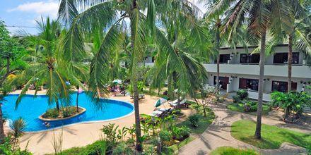 Poolområde på First Bungalow Beach Resort på Koh Samui, Thailand.