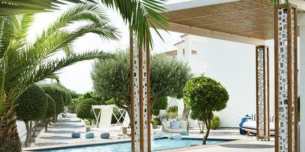 Poolområdet på Fito Aqua Bleu Resort i Pythagorion på Samos, Grekland.