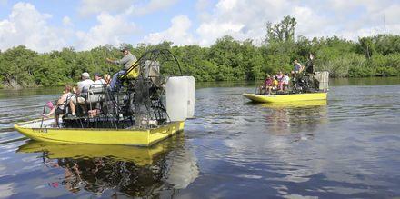 Everglades i Florida, USA.