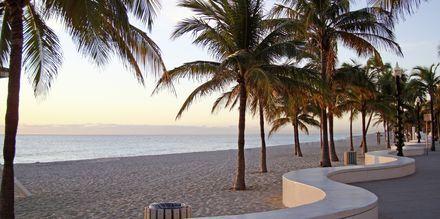 Strandpromenaden i Fort Lauderdale Florida.