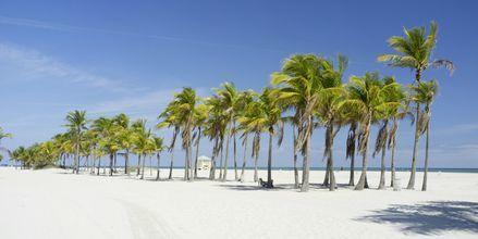 Strand i Crandon Park, Miami.